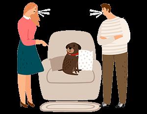 Problem 2: Pet disputes
